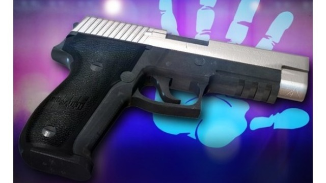 2-year-old boy killed in accidental shooting