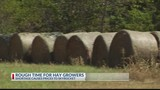 Hay shortage causes prices to skyrocket
