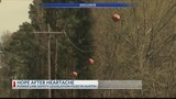 EXCLUSIVE: Parents shift focus to power line safety in wake of sons' deaths (part 2)