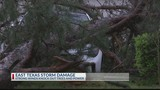 Another round of damage: storms take out trees and power lines
